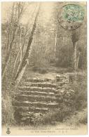 CHATEAU THIERRY Escalier Des Géants Au Bois St Martin (CLC) Aisne (02) - Chateau Thierry