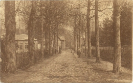 Dreve Du Chateau - Linkebeek
