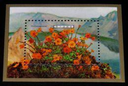 Korea - 1989 Mountains Flowers Block MNH__(THB-4507) - Korea (Noord)