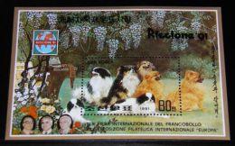 Korea - 1991 Riccione´91 Block MNH__(THB-4495) - Korea (Noord)