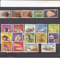 DJIBOUTI : Coquillages  :o : Y&T : Lot - Djibouti (1977-...)