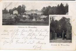 S137/ALS - CPA Château Et Avenue De WESSERLING - Exp. à Steinsulz Par Roppenzweiler - Autres Communes