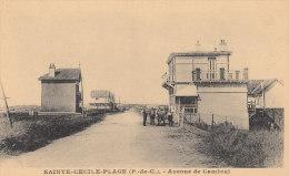 62 SAINTE CECILE PLAGE ( Par CAMIERS )  Avenue De CAMBRAI Du Monde Devant Les VILLAS - Non Classés