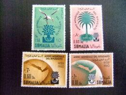 SOMALIA -  AÑO DEL REFUGIADO 1960 - WORLD REFUGEE YEAR   -- Yvert & Tellier Nº PA 83 + 277 / 278 (*) - Refugiados