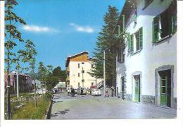 76153) Cartolina Della Sila - Bellezze Di Calabria - Viaggiata - Italia