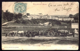CPA PRECURSEUR- FRANCE- BELVIANES (11)-  VUE DU VILLAGE- ATTELAGES DE 2 ET 4 BOEUFS EN TRES GROS PLAN- ANIMATION- ANE - Other Municipalities
