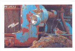 CARTE  DOUBLE   DE JOHAN DE CREM   MOINEAU   FRIQUET - Cartes Postales
