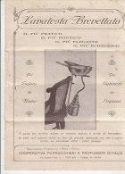 C1115 - PUBBLICITA' PRODOTTI PARRUCCHIERI-BARBIERI - LAVATESTA BREVETTATO  VG 1927 - Catalogues
