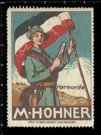 Old Original German Poster Stamp (cinderella,reklamemarke) Mundharmonika Flag Flagge Scout Harmonica Accordion - Music