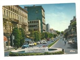 Cp, 83, Draguignan, Avenue Georges Clémenceau, écrite 1982 - Draguignan