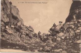 13 / 8 / 318  -   COL  DE  LA  GUEULAZ  PRÈS  FINHAUT - VS Valais