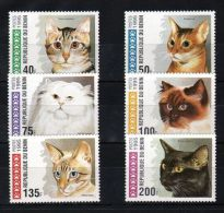 Benin - 1995 Cats MNH__(TH-6044) - Bénin – Dahomey (1960-...)