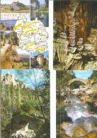 48 / LOZERE / Lot De 87 C.P.M. écrites - 5 - 99 Postales