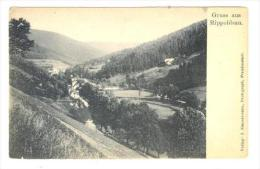 Gruss Aus Rippoldsau, Germany. 00-10s - Bad Rippoldsau - Schapbach