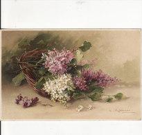 Carte Postale Fantaisie C.KLEIN -Corbeille De Fleur  - Illustrateur - Dessin - VOIR 2 SCANS - - Klein, Catharina