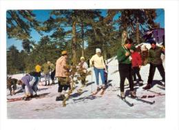CYPRUS , Winter Sports On Snow Covered Troodos, 60-70s - Cyprus