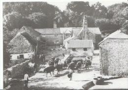Devon Postcard - Dornafield Farm 1922 Nr Ipplepen, Devon  AA604 - Other