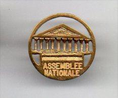 PINS PIN´S POLITIQUE ASSEMBLEE NATIONALE EN RELIEF - Pin's & Anstecknadeln