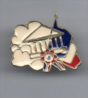 PINS PIN´S POLITIQUE ASSEMBLEE NATIONALE - Pin's