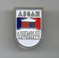 PINS PIN´S POLITIQUE ASSEMBLEE NATIONALE ASCAN BLASON - Pin's