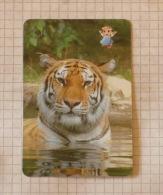 TIGAR   - Nature SERBIA ´70 (Yugoslavia) Tigre Tiger / Wild Cat, Chat Gatto Katze Gato / Animal - Unclassified