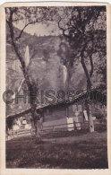 PHOTO CDV 19 EME SIECLE - MEIRINGEN - SUISSE - Photographs