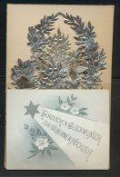 15 Juni 1894-Herzlichen Glückwunsch Zur Silbernen Hochzeit  Faltkarte Mit Silberdekoration Bestückt Maße: 11 X 7,2 Cm Er - Hochzeit