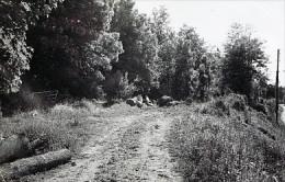 Photo  Ligne De LAGNY Après Fermeture Ancien Chemin De Mortcerf Cliché Schnabel 1955 - Schienenverkehr