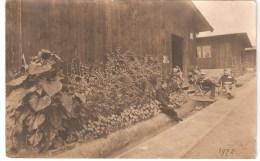 Göttingen- Camp De Prisonnier 28/08/ 1917  Militaire Belge - Guerre 1914-18