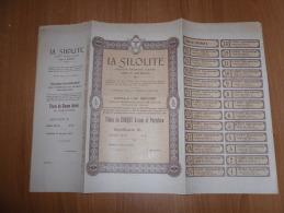 SCRIPOFILIA CERTIFICATO AZIONARIO SOCIETà ANONIMA LA SILOLITE GENOVA 1907 - Azioni & Titoli