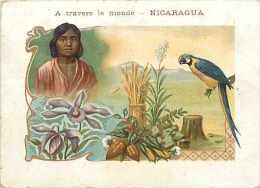 Pays Divers -ref A385-nicaragua  - Perroquet  -carte Bon Etat  - - Nicaragua