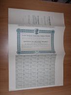 SCRIPOFILIA CERTIFICATO AZIONARIO SOCIETà ANONIMA COOPERATIVA ELETTRICA ARIZZANO INTRA 1928 - Azioni & Titoli