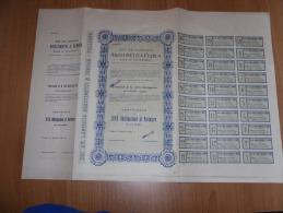 SCRIPOFILIA CERTIFICATO AZIONARIO SOCIETà ANONIMA LANIFICIO AGOSTINETTI & FERRUA TOLLEGNO 1931 - Azioni & Titoli