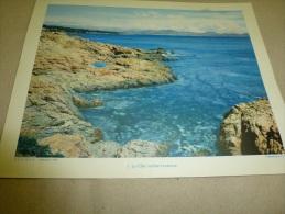 Année 1954  Grande Photographie En Couleurs Un COIN Perdu De La CÔTE Méditerranéenne   (27cm X 21cm) - Lieux