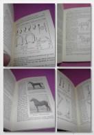 LE CHEVAL 1945 E.-C. FRAISSE  (très Frais) : Organisation, Conformation Extérieure. Comment On Achète Un Cheval. - Sciences