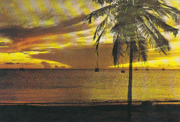 Venezuela Sunset On The Caribbean Sea