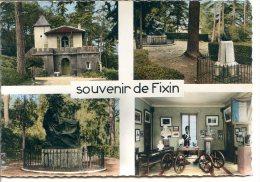 21220 FIXIN - Lot De 3 CPM - La Ville Du Musée De L'Empereur Napoléon 1er - Photo Véritable - France
