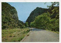 GREECE - AK 167343 Cephalonia-Poros - On The Way To The Beach - Greece