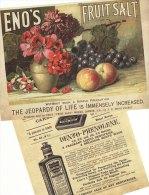 Victorian Advertising Leaflet Eno´s Fruit Salt FC Calvert Carbolic Tooth Paste Repro - Advertising