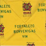 Kerchief - Bandana 87th World Esperanto Congress In Fortaleza - Tuko 87a Universala Kongreso En Fortalezo - Obj. 'Herinnering Van'