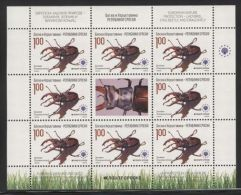 Republic Of Serbia - 2009 Insects Kleinbogen (2) MNH__(FIL-9933) - Bosnia Erzegovina