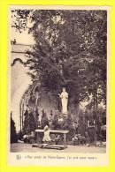 * Beauraing (Namur - Namen - La Wallonie) * (Nels, Editions Pro Maria) Endroit De L'apparition, Aux Pieds De Notre Dame - Beauraing