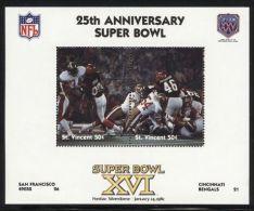 St.Vincent - 1991 Super Bowl Block (16) MNH__(FIL-10259) - St.Vincent (1979-...)