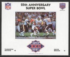 St.Vincent - 1991 Super Bowl Block (22) MNH__(FIL-10265) - St.Vincent (1979-...)