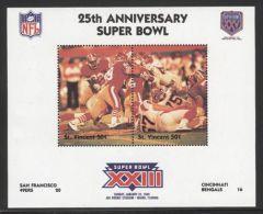 St.Vincent - 1991 Super Bowl Block (23) MNH__(FIL-10266) - St.Vincent (1979-...)