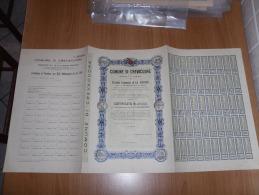 SCRIPOFILIA CERTIFICATO AZIONARIO COMUNE DI CREVACUORE PROVINCIA DI VERCELLI 1933 - Azioni & Titoli