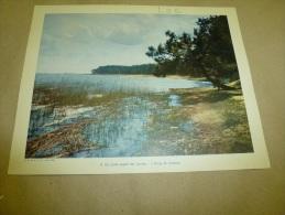 Année  1954  Grande Photographie En Couleurs (27cm X 21cm)  L´ étang De LACANAU .. - Orte