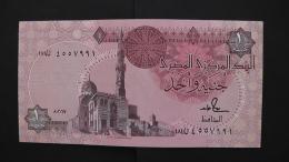 Egypt - 1 Pound - P 50d - Unc - As Scan - Aegypten