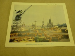 Année  1954  Grande Photographie En Couleurs (27cm X 21cm)  Le PORT De BORDEAUX. - Lugares