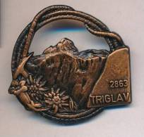 SLOVENIA, ALPINISM, MOUNTAINEERING, HIGHEST PEAK TRIGLAV, Ca 25 Mm, PINBACK - Alpinisme